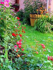 flickr:Bauerngarten